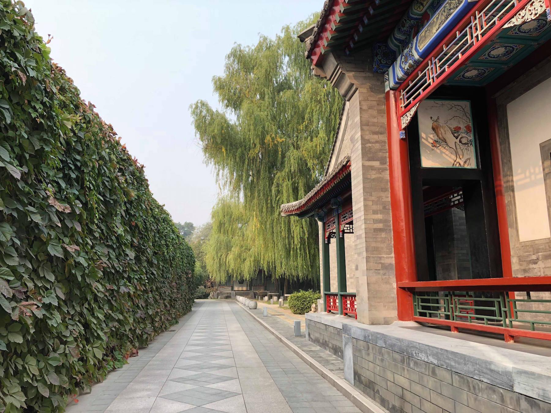 大堂通往庭院套房(Courtyard Suites)的道路